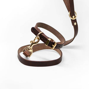 Coffee - Classic Leather Collar - Holler Brighton