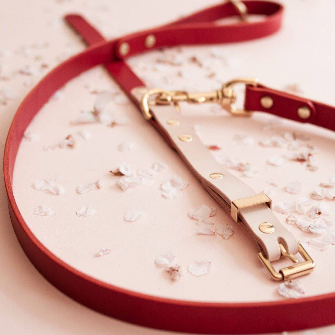 Nude & Ruby Duotone Leather Collar + Brass Hardware - [Holler Brighton]