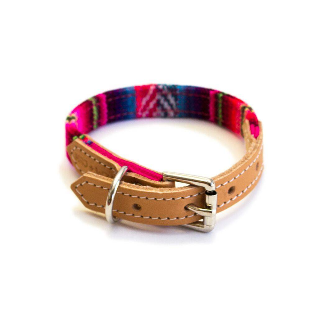 Inca Pink collar - Holler Brighton