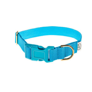 Baby Blue - Polly Webbing & Brass Collar - Holler Brighton
