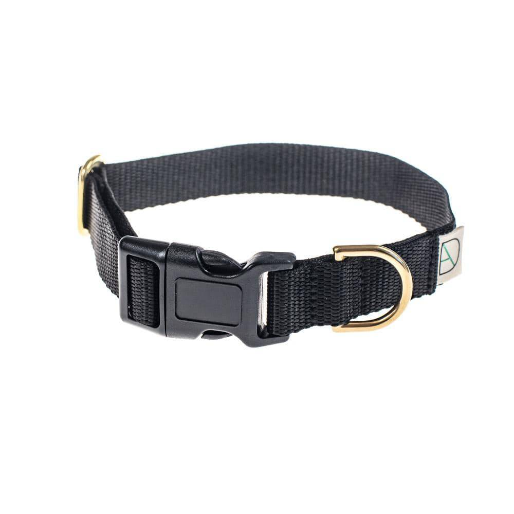 Black - Polly Webbing & Brass Collar - Holler Brighton