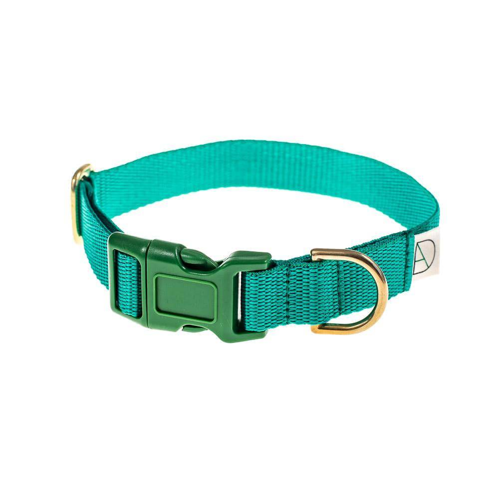 Emerald - Polly Webbing & Brass Collar - Holler Brighton