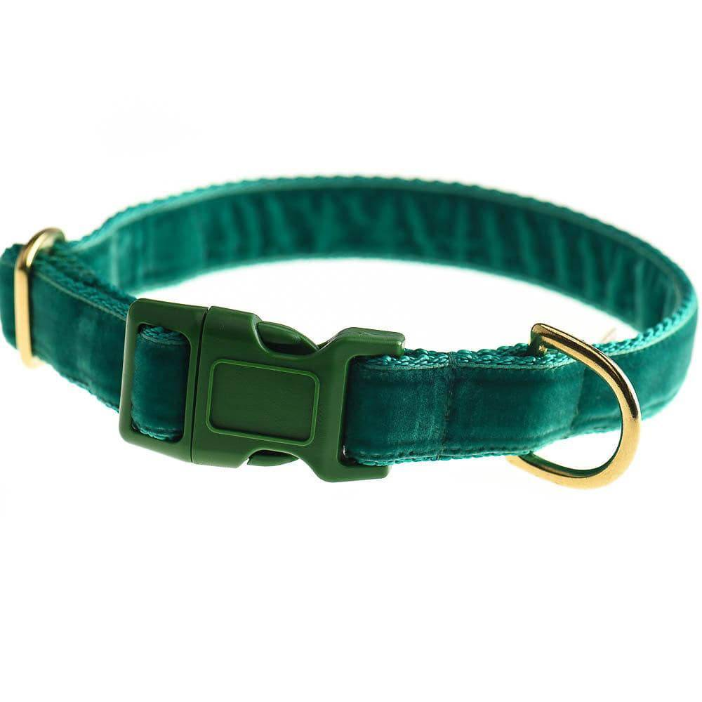 Emerald - Velvet Webbing & Brass Collar - Holler Brighton