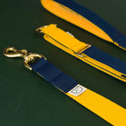 Luxury Double Yellow & Navy Collar & Lead Set - Holler Brighton