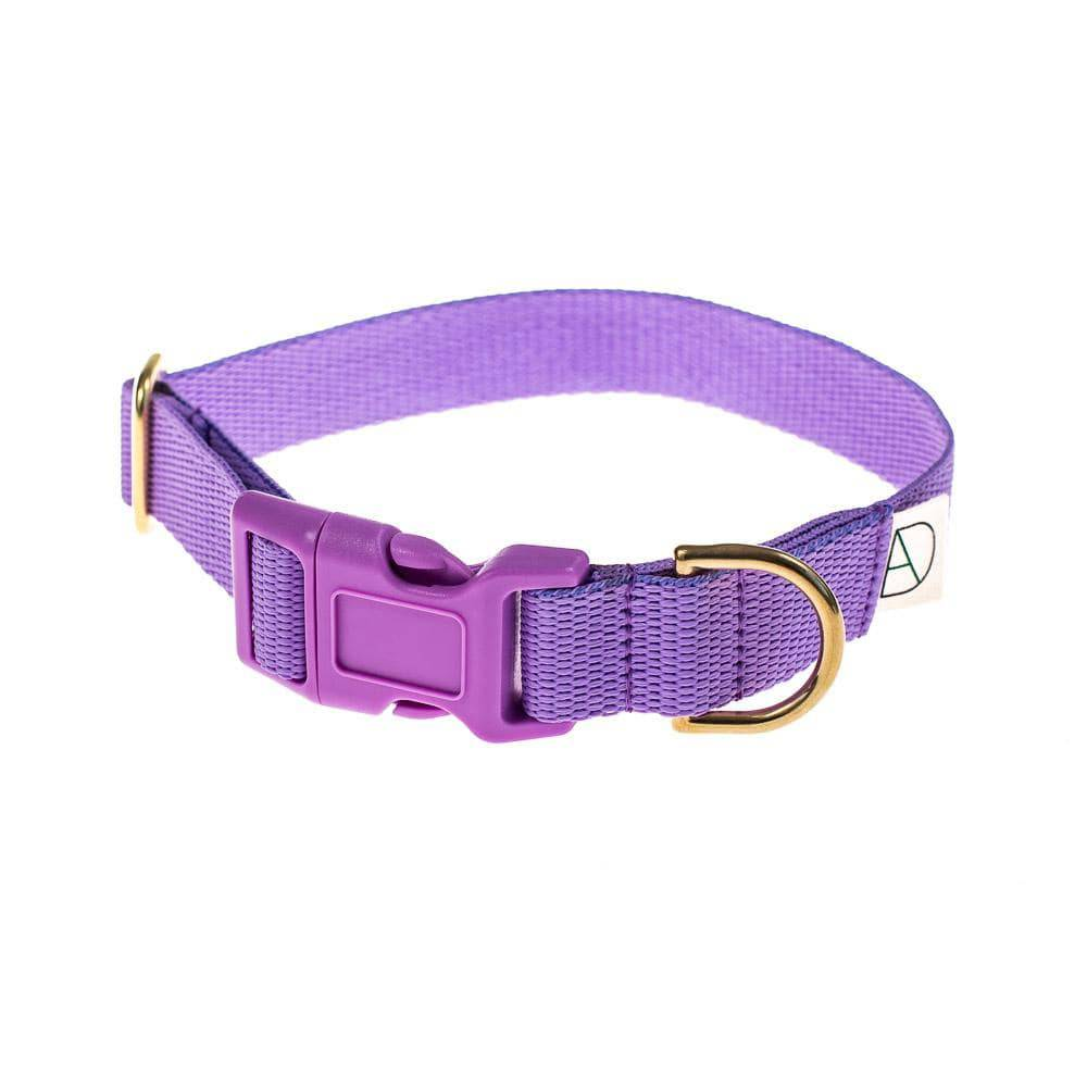 Mauve - Polly Webbing & Brass Collar - Holler Brighton