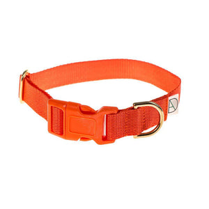 Orange - Polly Webbing & Brass Collar - Holler Brighton