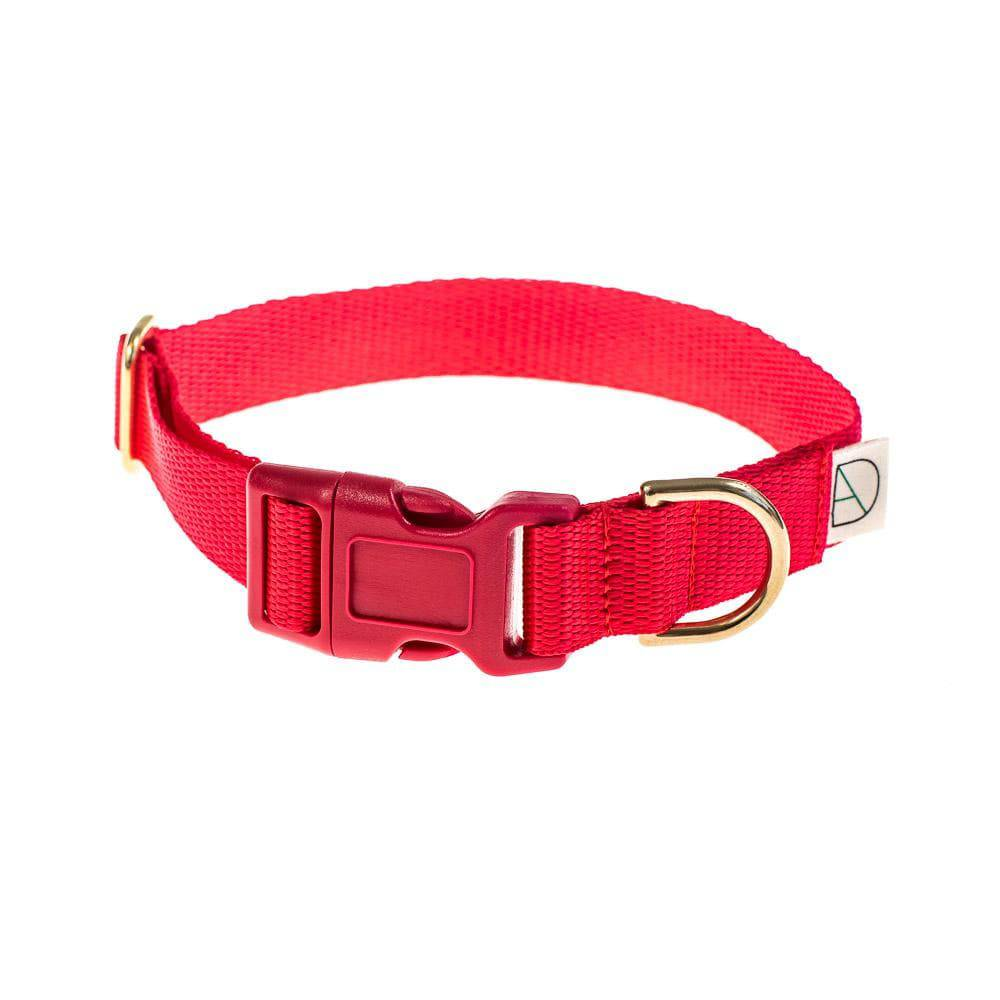 Red - Polly Webbing & Brass Collar - Holler Brighton