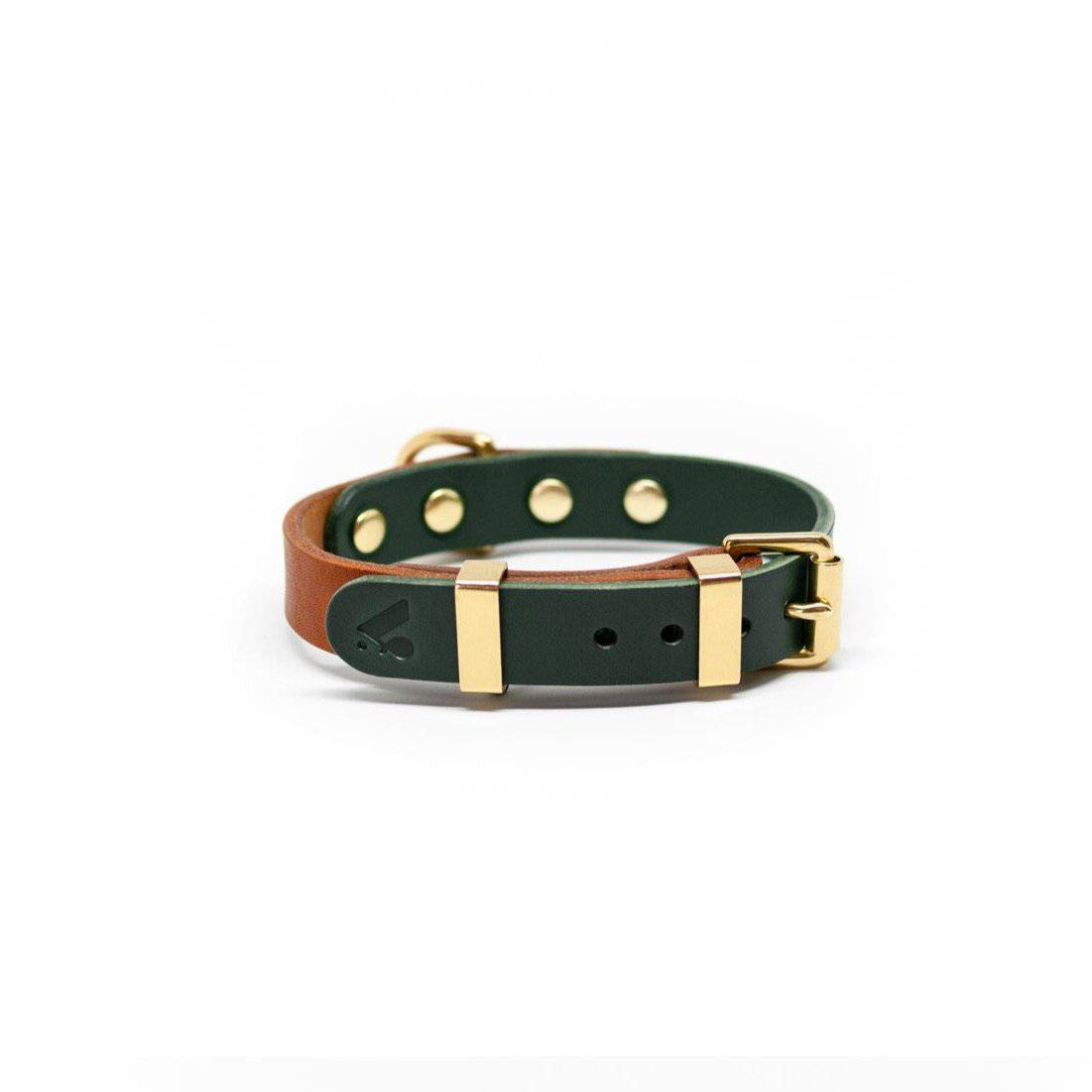 Caramel & Green Duotone Leather Collar + Brass Hardware - Holler Brighton