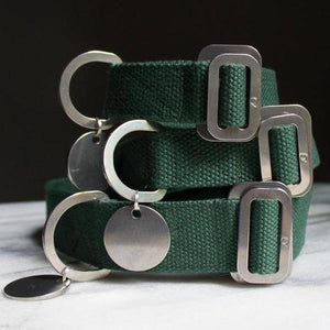 Green - Cotton Collar + Marine Grade Steel Buckle - Holler Brighton