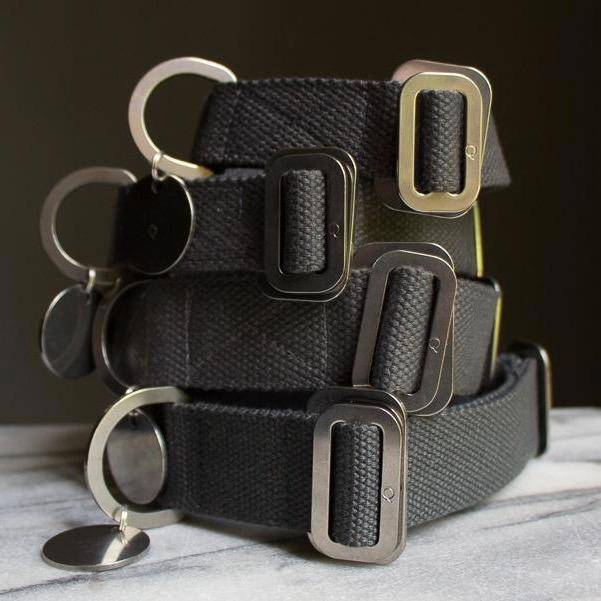 Grey - Cotton Collar + Marine Grade Steel Buckle - Holler Brighton