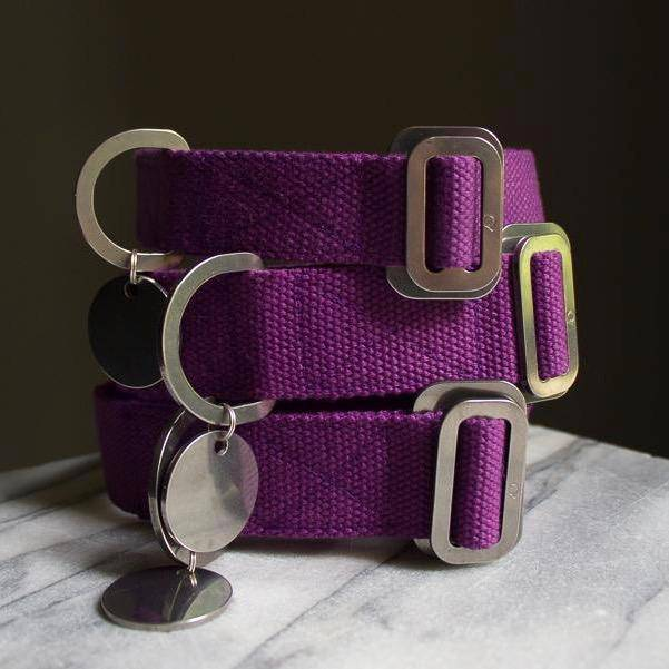 Purple - Cotton Collar + Marine Grade Steel Buckle - Holler Brighton