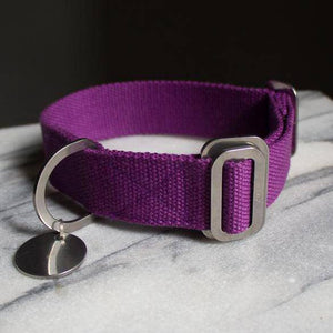 Purple - Cotton Collar + Marine Grade Steel Buckle - [Holler Brighton]