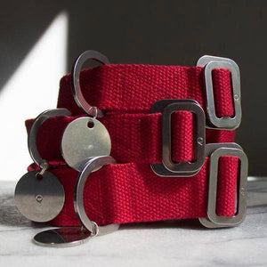 Red - Cotton Collar + Marine Grade Steel Buckle - Holler Brighton