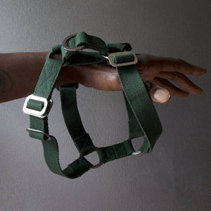 Green Cotton Harness + Marine Grade Steel Hardware - [Holler Brighton]