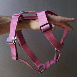 Pink Cotton Harness + Marine Grade Steel Hardware - Holler Brighton
