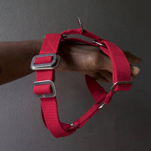 Red Cotton Harness + Marine Grade Steel Hardware - Holler Brighton