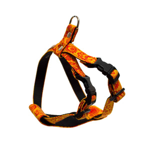 Orange Paisly Harness - Holler Brighton