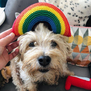Rainbow - crochet toy, with squeaker - Holler Brighton