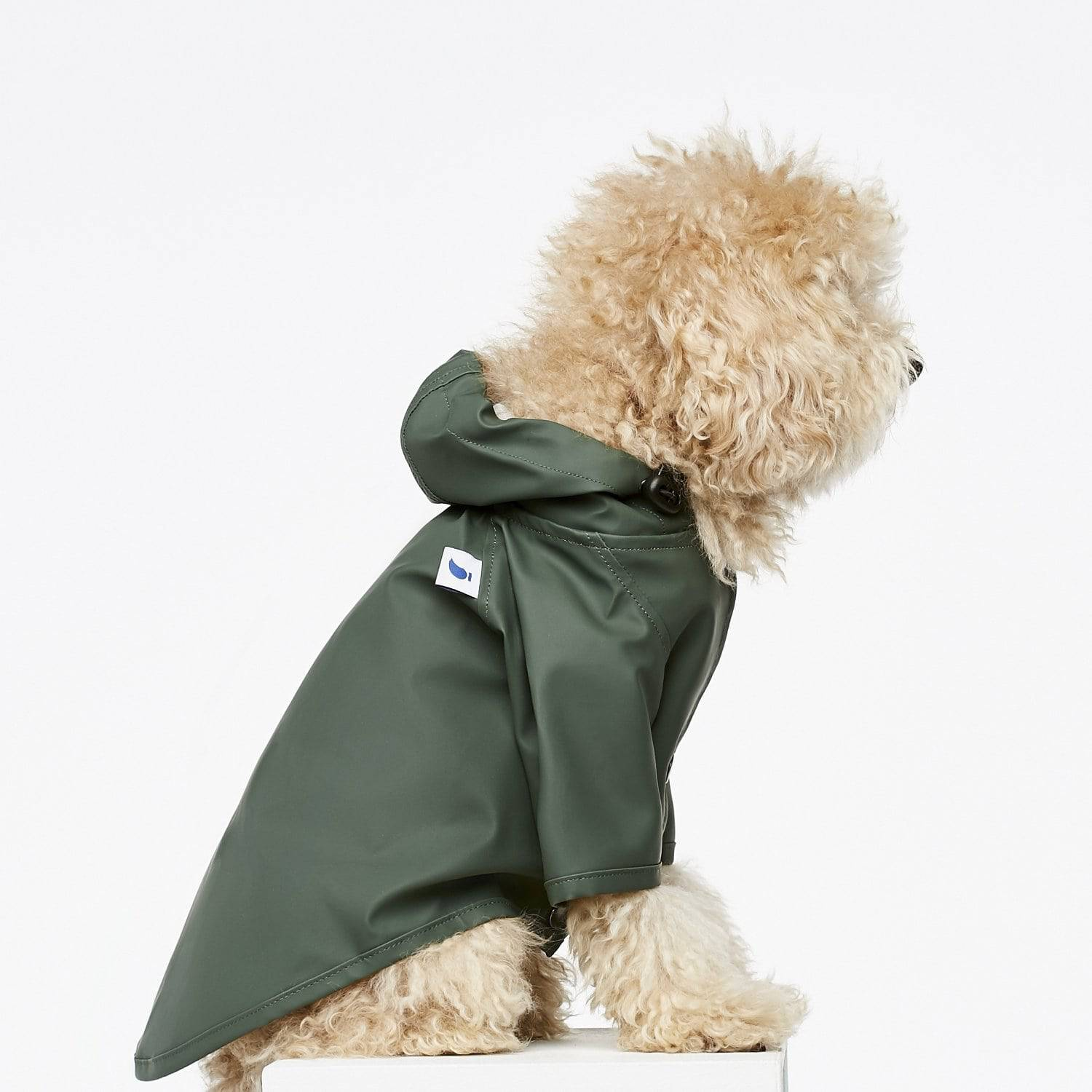 Green - Classic Rain Coat - Holler Brighton