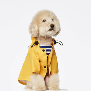 Yellow - Classic Rain Coat - Holler Brighton