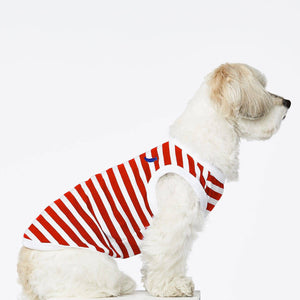 Red & White Stripped - Cotton T Shirt - Holler Brighton