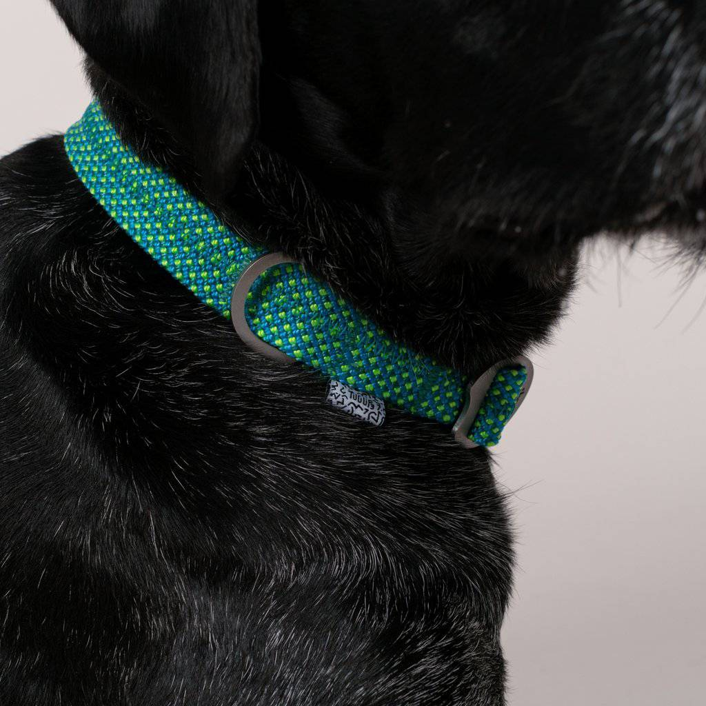 Green Teal Fabric & Steel Collar - Holler Brighton
