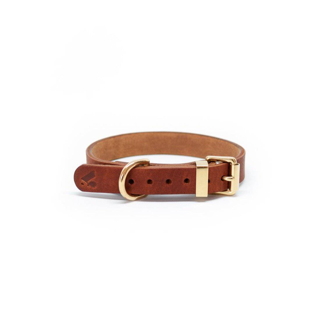 Caramel - Classic Leather Collar - Holler Brighton
