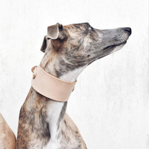 Nude - Leather Sighthound Collar - Holler Brighton