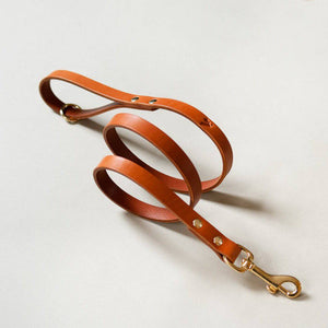Caramel -  Classic Leather Lead - Holler Brighton