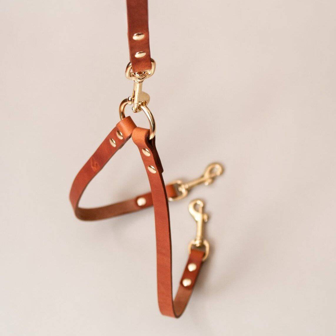 Caramel - Leather Twin Lead Extension - Holler Brighton