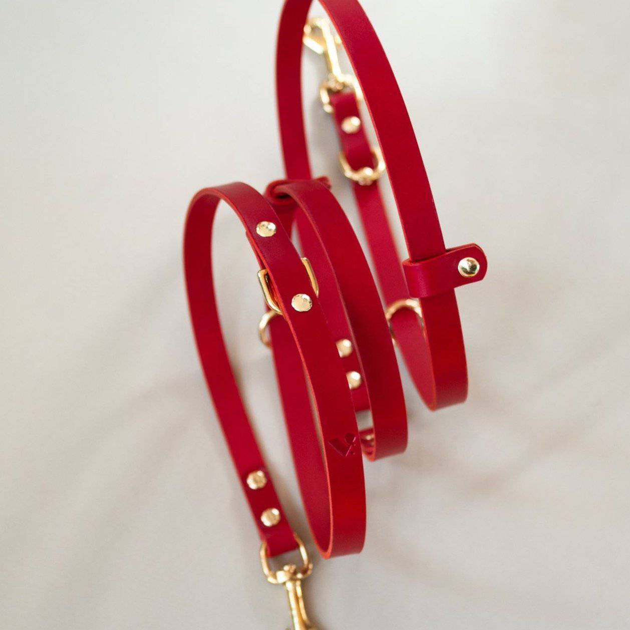 Red Leather Multi-Lead - Holler Brighton