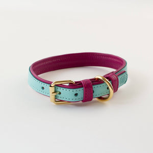 Teal & Fuchsia - Leather Collar - Holler Brighton