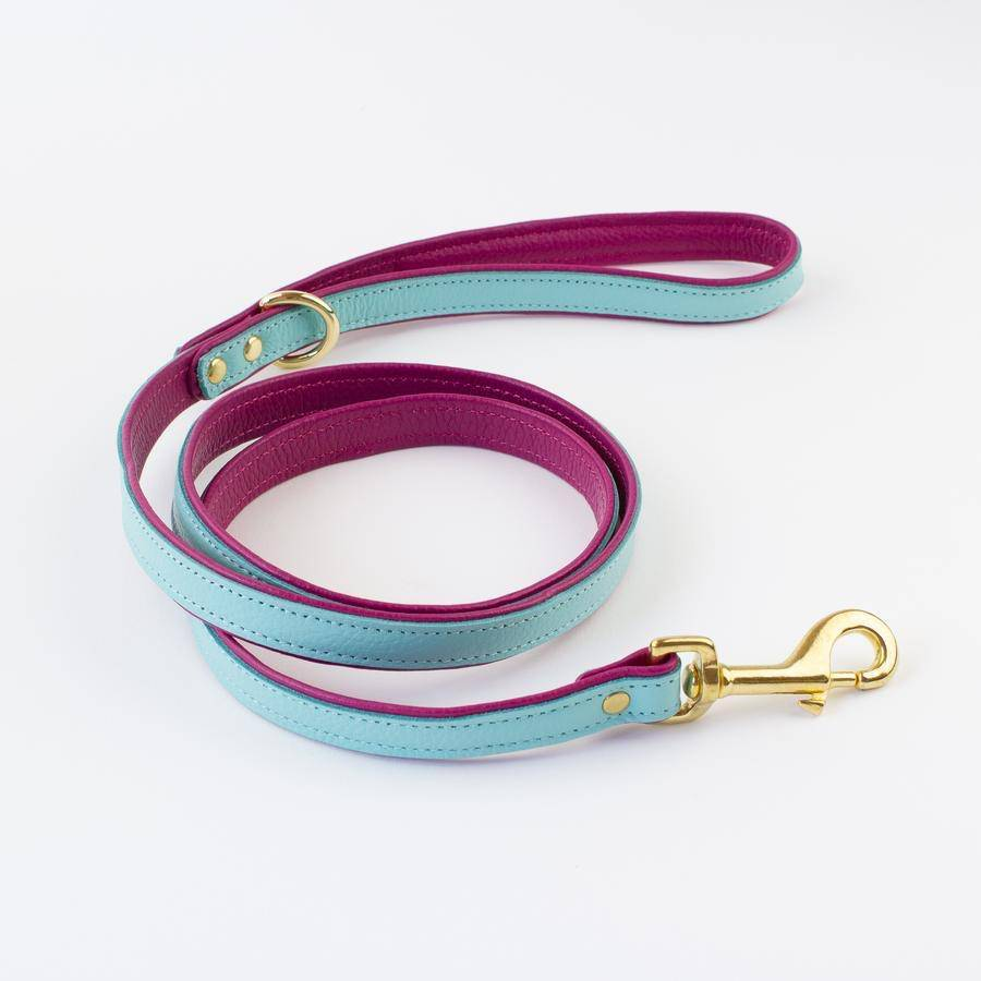 Teal & Fusia - Leather Dog Lead - Holler Brighton