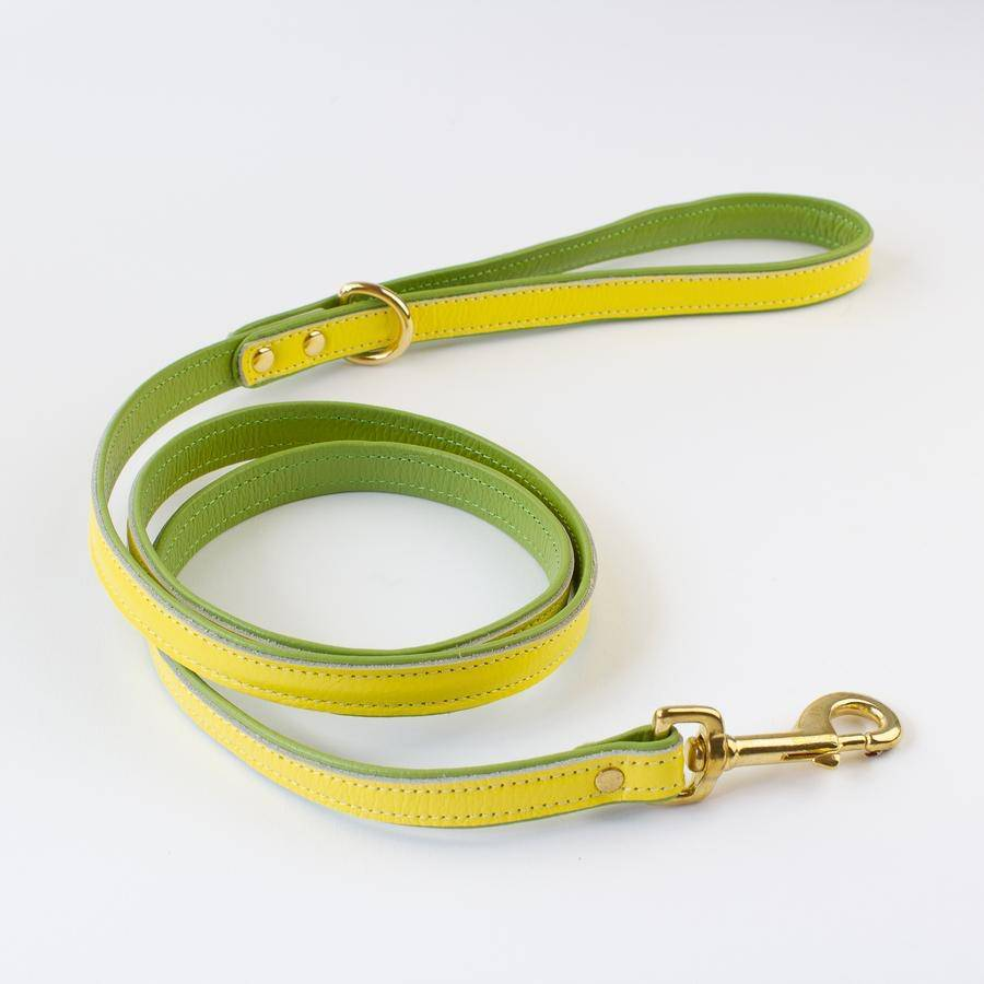 Yellow & Lime - Leather Dog Lead - Holler Brighton