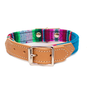 Inca Blue Dog Collar - [Holler Brighton]