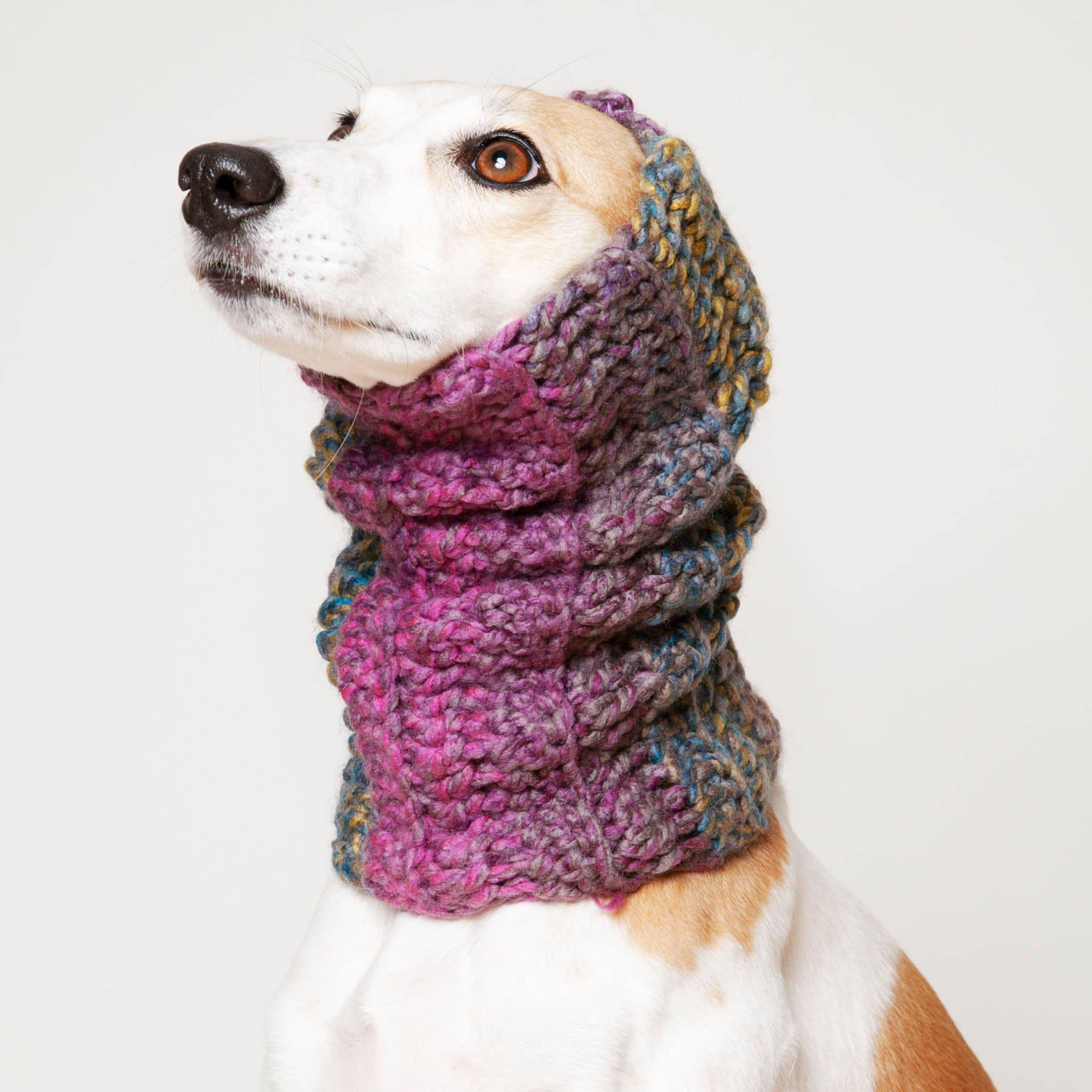 Wolf & Wool - Long Dog Snood - Holler Brighton