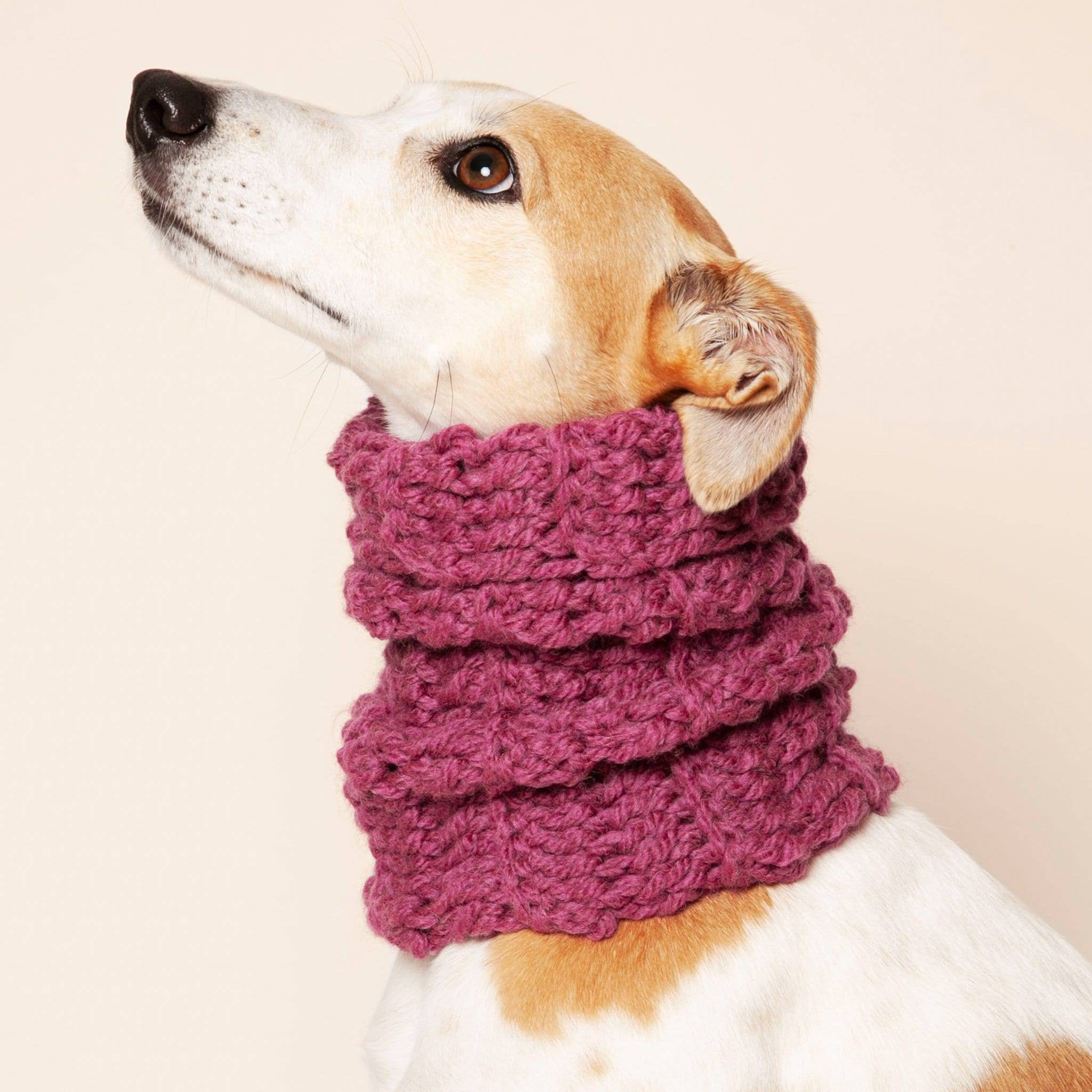 Wolf & Wool - Long Dog Snood - [Holler Brighton]