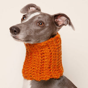 Wolf & Wool - Small Dog Snood - [Holler Brighton]