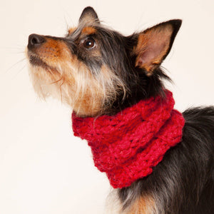 Wolf & Wool - Small Dog Snood - Holler Brighton