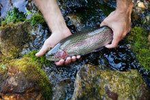 Load image into Gallery viewer, Driftless Trout Filet - Coming Soon!