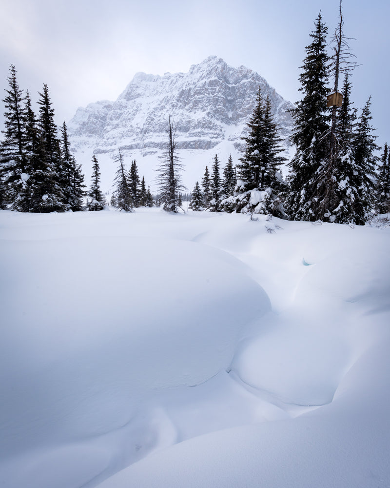 Snowy scene of Bow Lake and Crowfoot Mountain in Banff National Park, Alberta