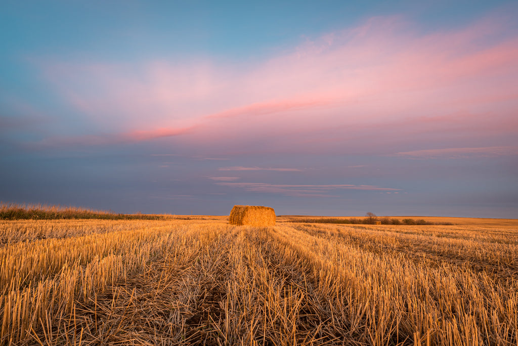 Hay bale at sunset, rural Alberta, landscape photography