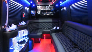 12 Passenger Mercedes-Benz Sprinter Party Bus - NY Wine Tours
