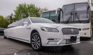 15 Passenger Lincoln Continental Limousine - NY Wine Tours