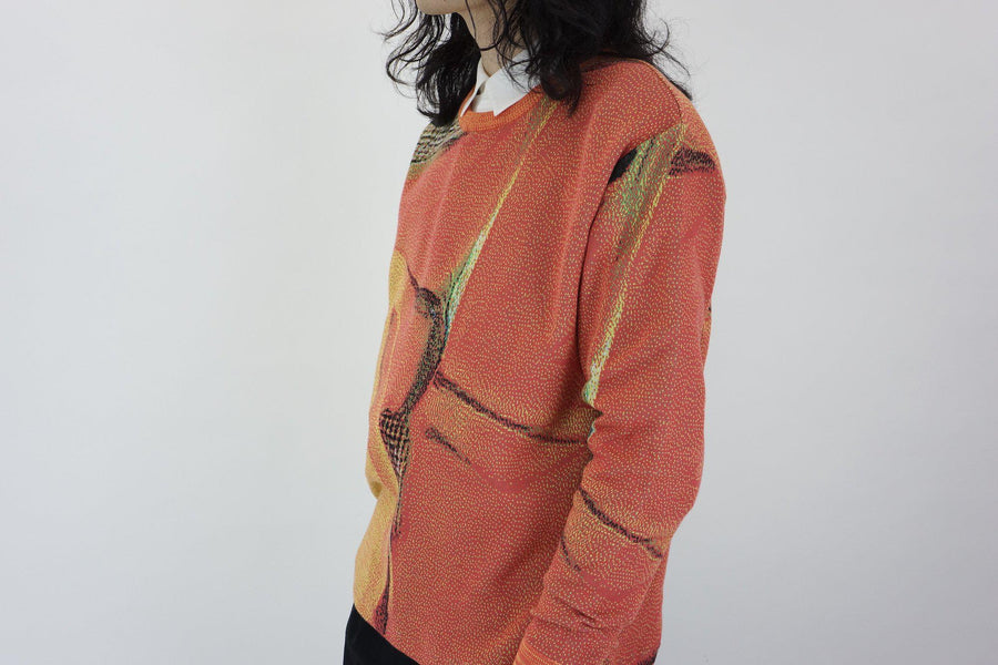 Syn Feather Sweater / STRELITZIA