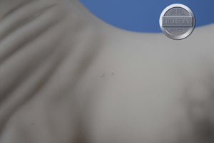Crepe Suzette-Cantering Warmblood-Breyerfest Exclusive-Breyer Stablemate