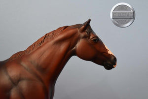 Sugar-Equilocity Exclusive-American Saddlebred Pebbles-Peter Stone