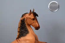 Load image into Gallery viewer, Our First Pony-Love Arabian Foal-Breyer Classic