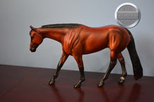 Load image into Gallery viewer, CH Imperator-Glossy Five Gaiter-Breyer Traditional