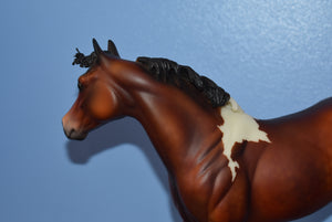 Riley Factory Custom Bay Paint Ideal Stock Horse-Matte-Peter Stone